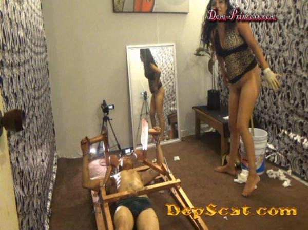 The Girl Lifter Daniela, Inka, Karina, Thalia, Diana - Scat / Femdom [SD/1.18 GB]