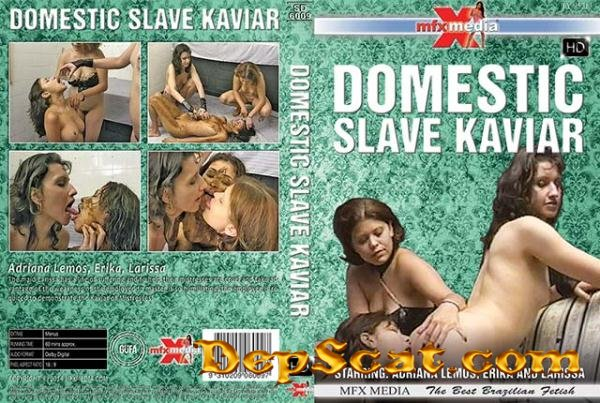 [SD-6009] Domestic Slave Kaviar Adriana Lemos, Erika, Larissa - Lesbian, Domination [HDRip/1.25 GB]