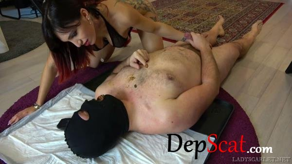 Lady Scarlet Exciting shit LadyScarlet - Domination, Humiliation [FullHD 1080p/1.46 GB]